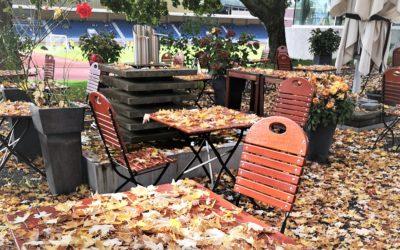 Herbstzeit ist Vata-Zeit
