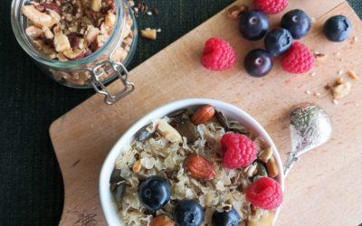 Porridge ayurvedisch